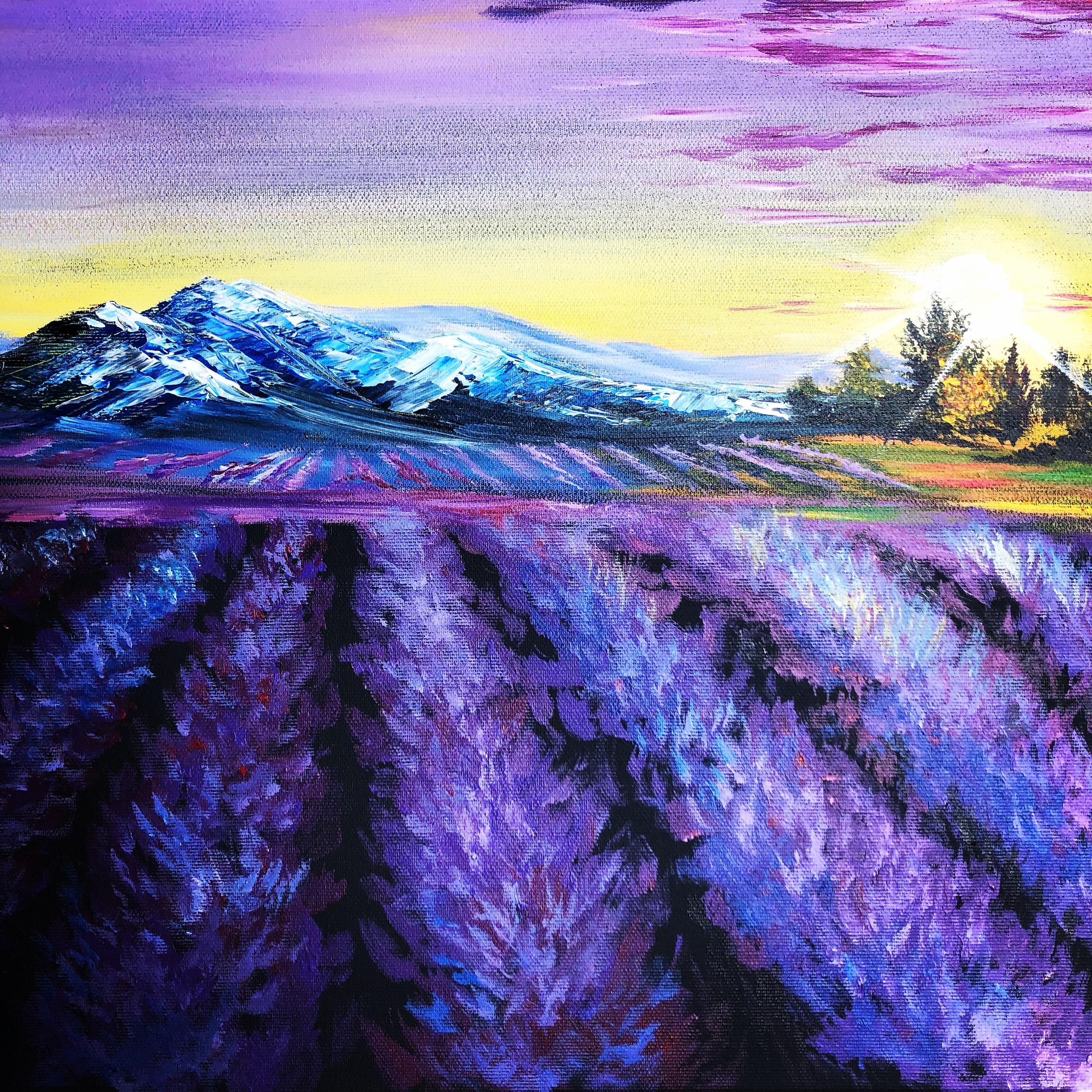 FessNeki: Lavender field